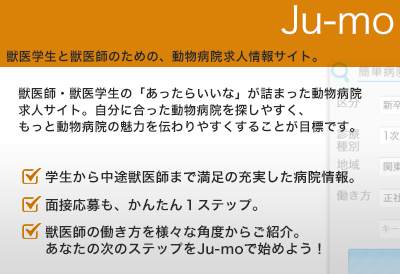 jumo-banner_big2